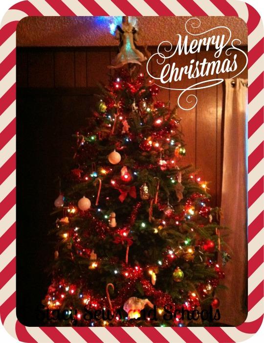 Christmas 2013 013