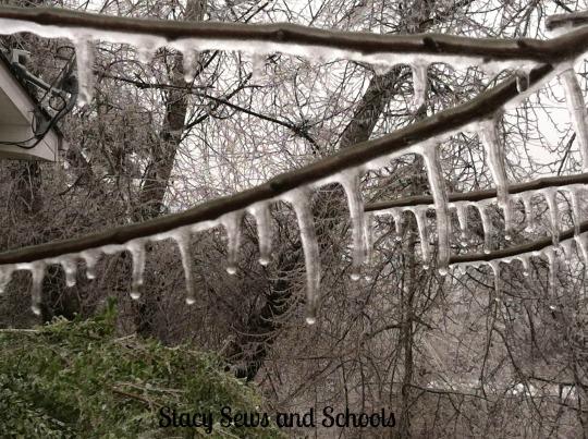 Ice Storm 2013 023