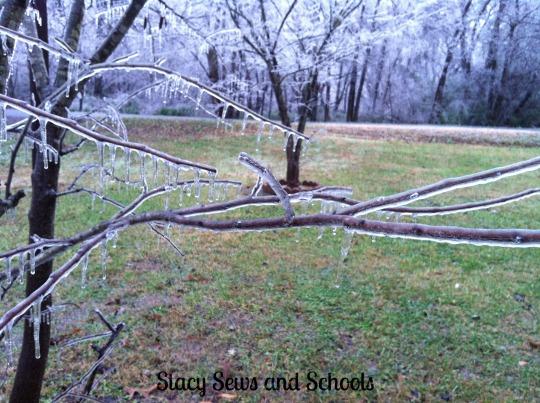 Ice Storm 2013 029