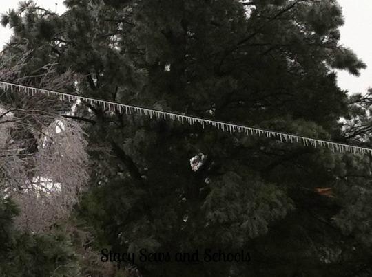 Ice Storm 2013 031