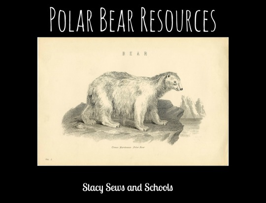 Polar-Bear-Resources